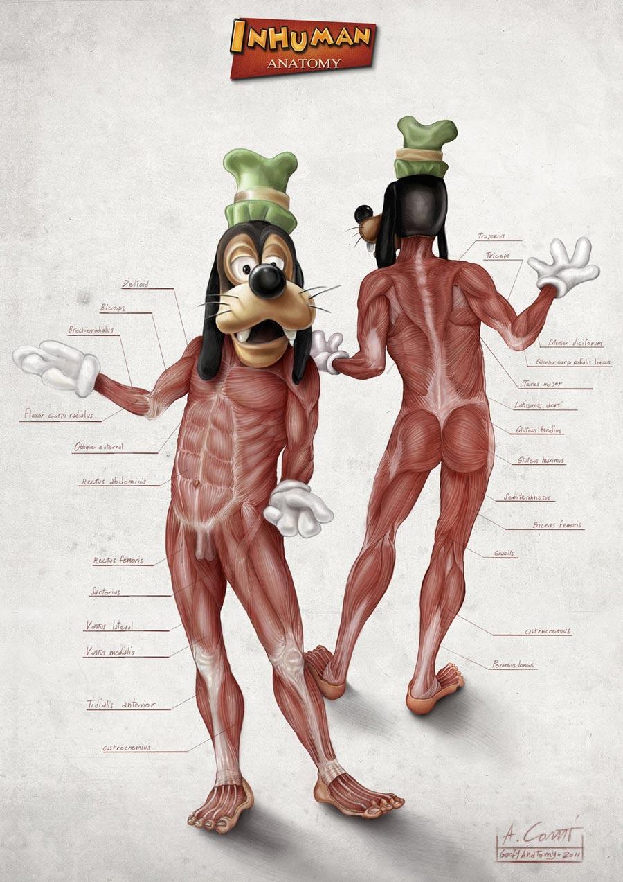 Goofy's Anatomy by Alessandro Conti